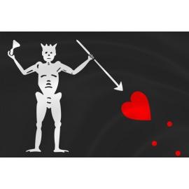Флаг пирата Эдварда Тича