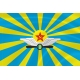 Флаг ВВС СССР